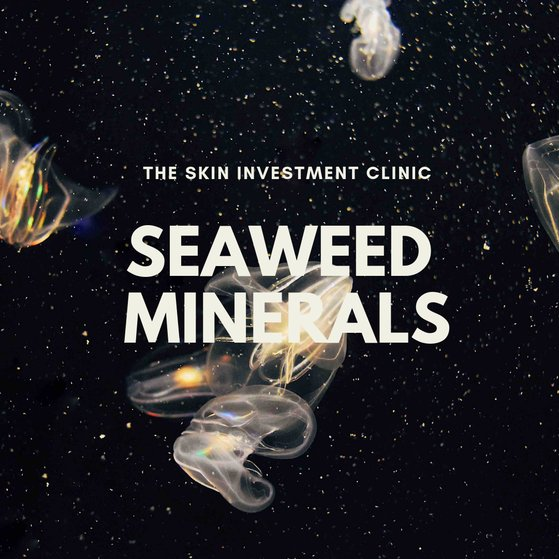 Minerals and Marine Trace Elements Present in Seaweed
